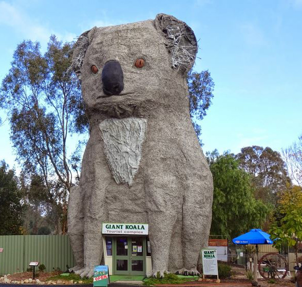 Giant Koala at Dadswells Bridge Motel